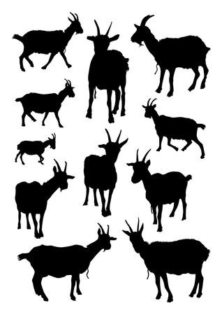 queso de cabra: Cabras Siluetas Set