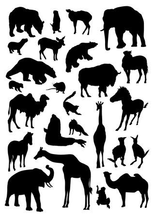 Los animales salvajes fijaron Foto de archivo - 39894952