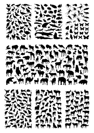 wild hog: Big animals silhouettes set