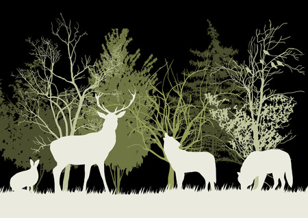 Wild Animals in the Forest Silhouettes