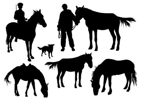 reins: Horses silhouettes set Illustration