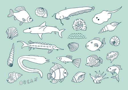 sturgeon: Sea hand drawn set