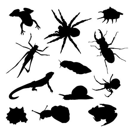 lizard in field: Insectos Siluetas Set Vectores