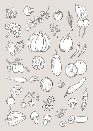 Hand drawn isolated vegetable sketch set