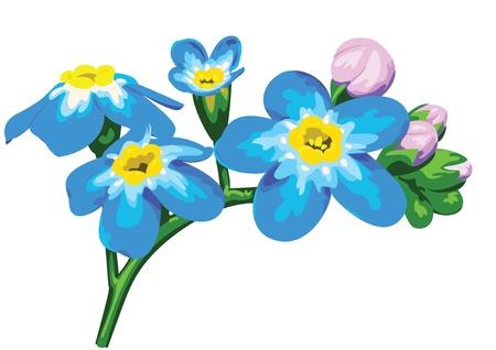 flower meadow Stock Vector - 17023925