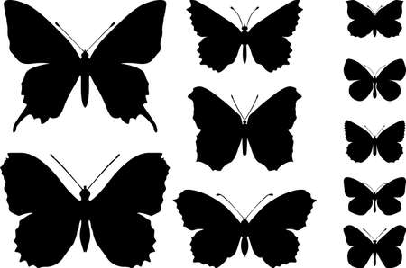 Vlinders Stockfoto