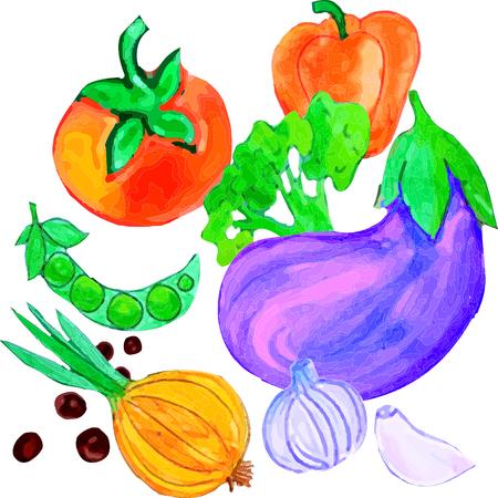 Auberginen, Zwiebeln, Paprika, Tomaten, Erbsen, Knoblauch, Brokkoli auf weißem Hintergrund