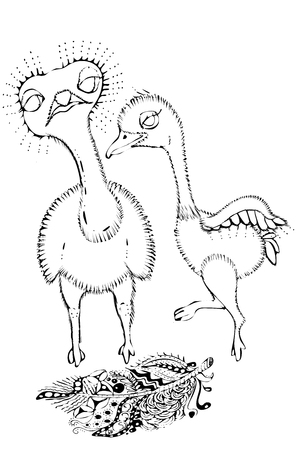 Children and parents in the animal world.Ostriches.Cute ostriches in cartoon style.Coloring Çizim