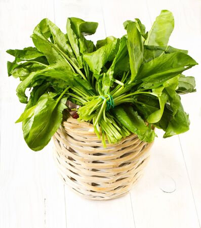 wood sorrel: A bouquet of fresh tasty greens  in a bowl wicker basket on white wooden background Stock Photo