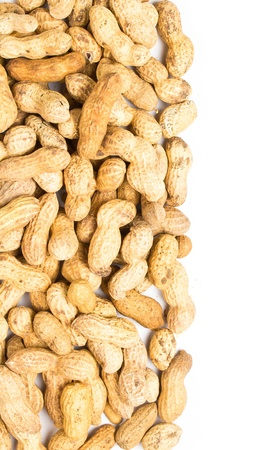 earth nut: A pile of shelled tasty big peanuts closeup on white background