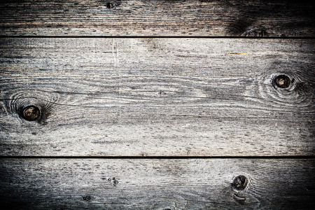 Dark grey wooden textured background closeup. Gray texture of bark wood use as natural background photo