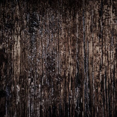 dark brown: Vintage texture of bark wood natural background, dark brown color Stock Photo
