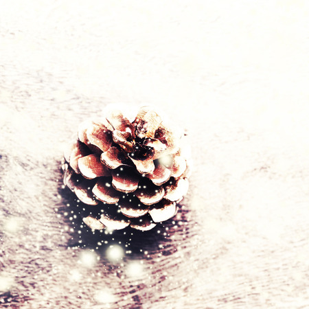 festive pine cones: Christmas background with christmas decoration. Festive pine cones with falling snow flakes. Card or invitation.