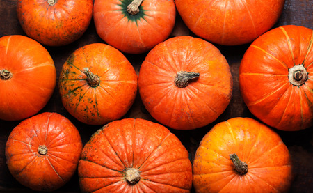 Happy Thanksgiving  Card - pumpkins background top view Stock Photo