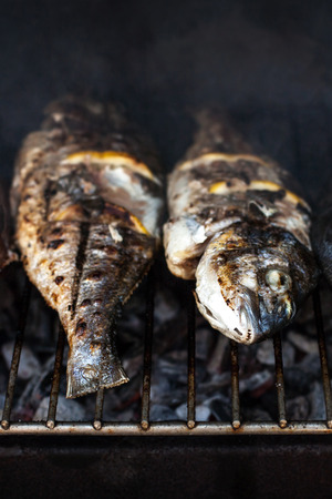 fish fire: Grilled fish with spices on fire close up. Grilling fish  dorado on campfire