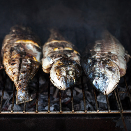 salmo trutta: Roasted, Grilled fish barbecue with spices and lemon on the grill close up