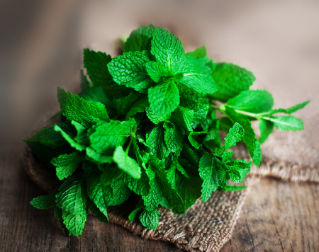 Fresh mint leaves herb on wooden table, selective focus close up. Green mint with copy space  Stock Photo