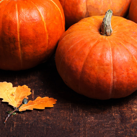 Autumn Pumpkin Thanksgiving Background concept  - orange pumpkins over wooden table macro