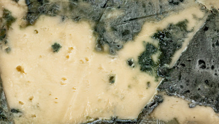 Blue cheese Gorgonzola. Mold cheese textured background