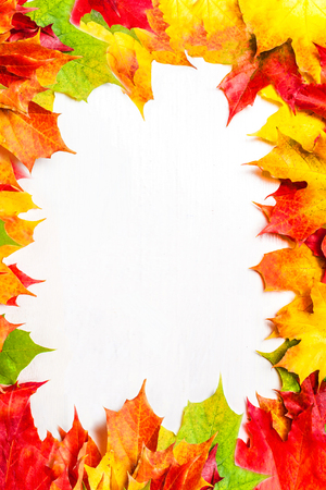 Autumn frame composition with autumn leaves on white background with Copy space.  Flat lay, top view