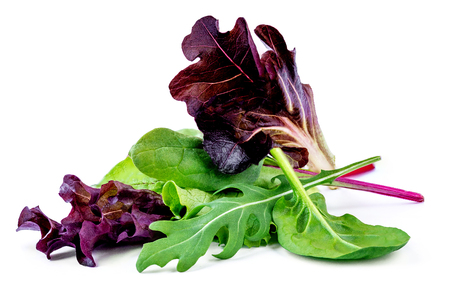 Salad leaves mix with rucola, purple  lettuce, spinach and  chard, leaf isolated on white background. Standard-Bild - 116459058