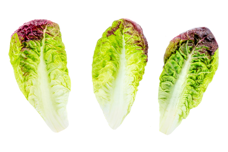 Set green salad leaves isolated on white background.  Purple Lettuce salad