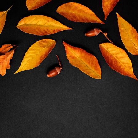 Autumn composition with golden maple and oak leaves on black background. Flat lay. Top view. Copy space Banco de Imagens - 124565186