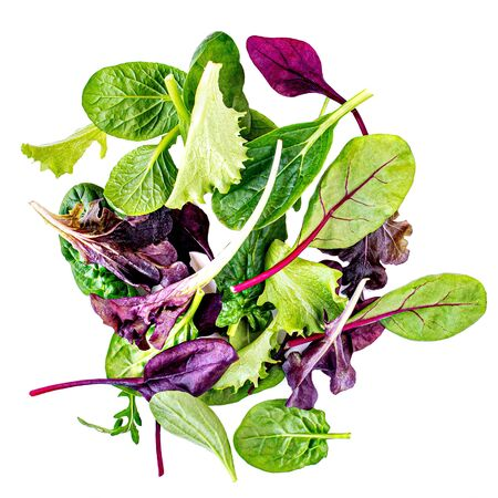 Salad mix with rucola, frisee, radicchio, chard and lamb's lettuce. Green salad Isolated on white background Banco de Imagens - 124565203