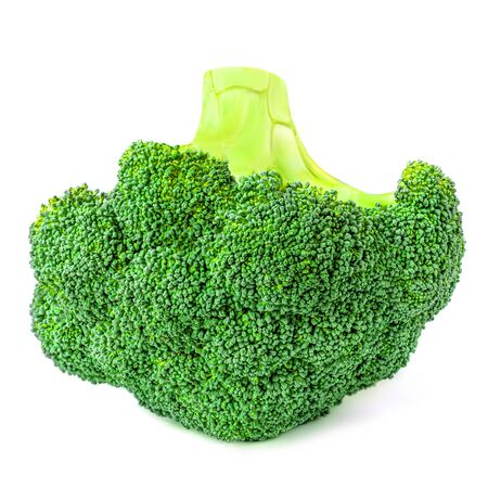 Broccoli isolated on white background. Fresh Broccoli vegetable closet up. Organic Food concept