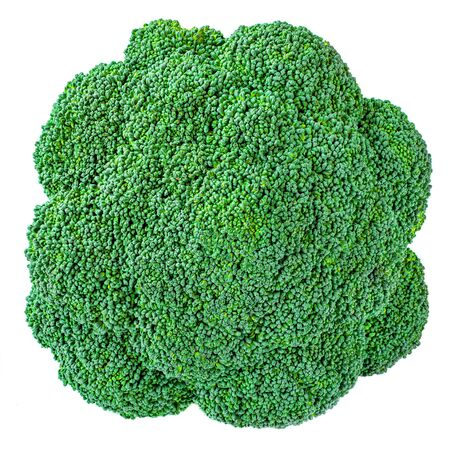 Green Broccoli isolated on white background. Fresh Broccoli vegetable closet up. Organic Food concept Banco de Imagens