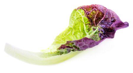 Salad leaf. Purple Lettuce leaf  isolated on white background Stock Photo