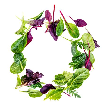 Salad Mix  isolated on white background. Food Frame made of Fresh  salad with arugula, lettuce, chard, spinach and beets leaf. Banco de Imagens