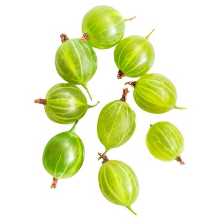 Group of green Gooseberry. Fresh berries isolated on white background. Flat lay. Top view
