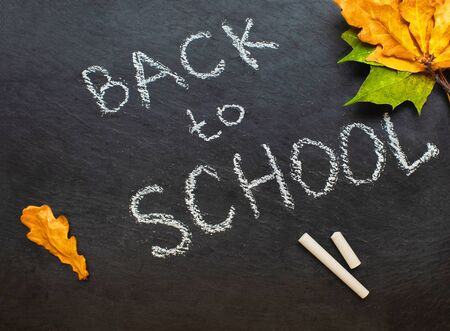 Back to school concept. Black chalkboard with pieces of chalks and autumn yelllow leaves isolated on white background. Flat lay Banco de Imagens