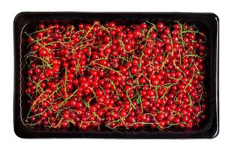 Red currant berries in a black  box isolated on white background. Heap of Fresh Currant. Harvesting, Food concept. Top view.