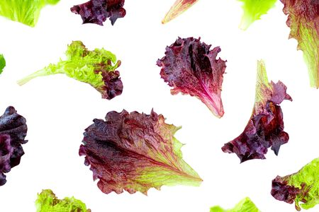 Lettuce leaves Pattern. Fresh lettuce  isolated on white background. Batavia salad. Top view. Healthy organiv food concept. Flat lay Stock Photo
