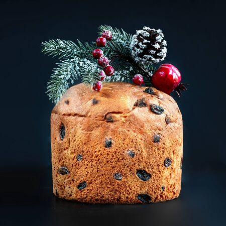 Christmas cake panettone. Delicious  Christmas cake decorated with fir tree branch, red berries and raisin  on black background. Reklamní fotografie