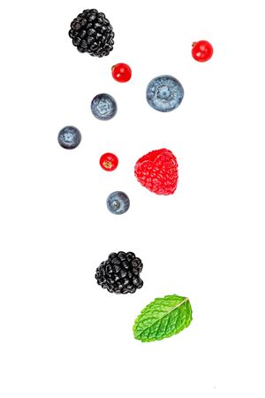 Isolated berries. Falling mix  berries isolated on white background. Raspberry, Blueberry, Blackberry. red currant and Mint leaf Reklamní fotografie