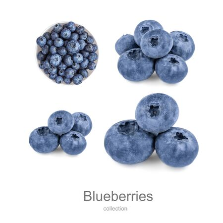 Fresh Blueberries collection  isolated on white background. Wild orest berries creative layout Banco de Imagens