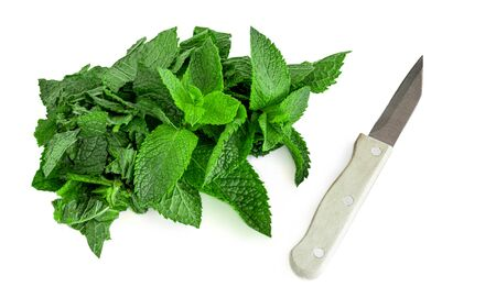 Chopped Fresh spearmint leaves  with a knife isolated on the white background. Mint, peppermint close up Banco de Imagens
