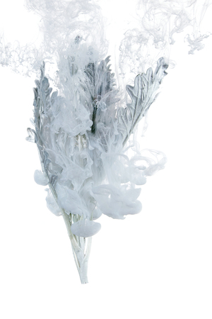 Gray grass inside in water on a white background. Flowers is under the water with acrylic blue and white paints us Winter Tale.