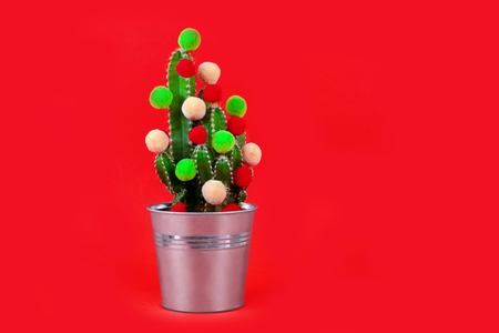 Funny holiday cactus tree with colored balls. Green tropical flower us a gift for celebration or party on the red bachground.
