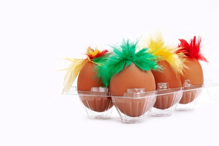 A lot of chicken eggs with red, green and yellow feathers on the white background.