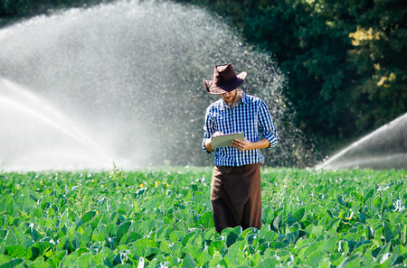 Farmer using digital tablet computer on sprinkler system background. A young agronomist is on the plantation and checks quality of the crop. 写真素材