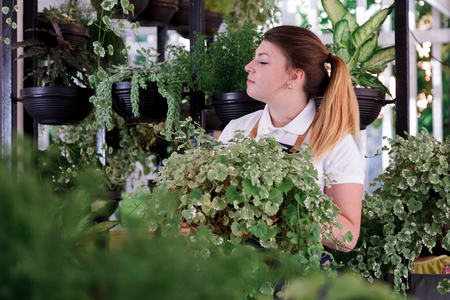 Young smiling girl florist working in the garden or greenhouse. An attractive woman makes design of an interior or a cafe of pots with plants.