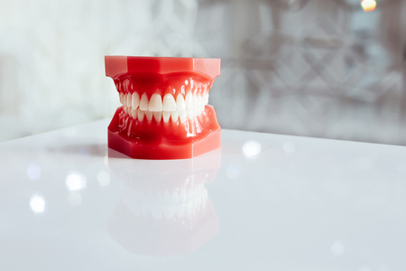 Dental clinic with red plastic jaw Orthodontic device for prosthetics on white background. Copy space.