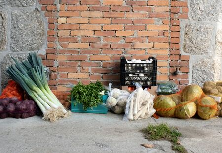 Good harvest of vegetables on the farm. A lot of different fresh ripe greens and healthy food from supermarket near wall.
