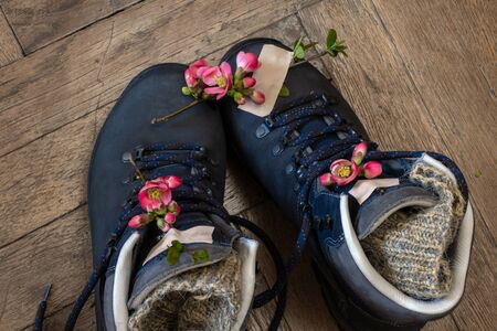Two pair of boots for hiking stand on the wooden floor. Top view of the shoes for tourism with pink spring flowers and adhesive tape. Standard-Bild