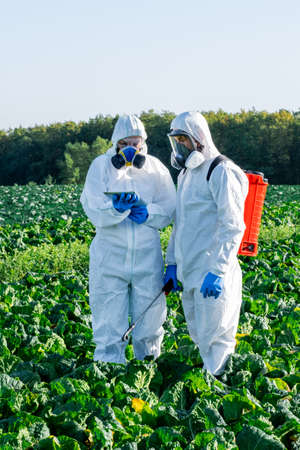 Scientist and Agronomist wearing a white protective equipment, chemical mask and glasses use Laptop on farm field.