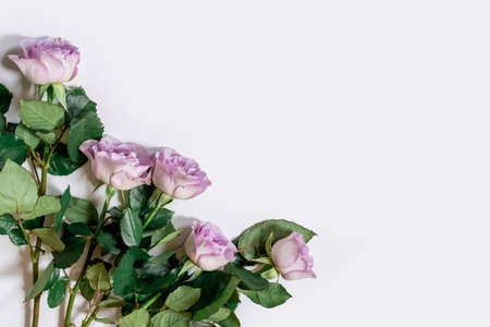 Bouquet from Pink roses on the white background, top view, copy space.